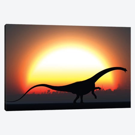 A Silhouetted Diplodocus Dinosaur Takes At The Start Of A Prehistoric Day Canvas Print #TRK2684} by Mark Stevenson Canvas Art Print
