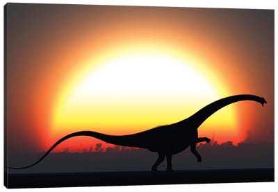 A Silhouetted Diplodocus Dinosaur Takes At The Start Of A Prehistoric Day Canvas Art Print