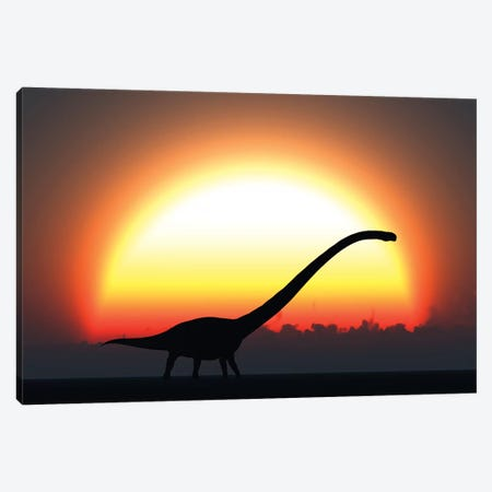 A Silhouetted Omeisaurus Walks Pass The Rising Sun At The Start Of A New Day Canvas Print #TRK2685} by Mark Stevenson Art Print