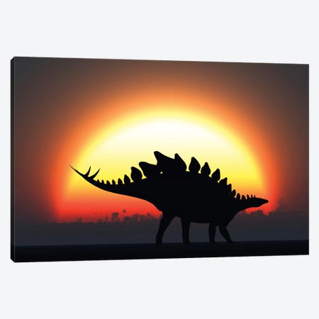 A Stegosaurus Silhouetted Against The Setting Sun At The End Of A Prehistoric Day Canvas Print #TRK2688} by Mark Stevenson Canvas Artwork