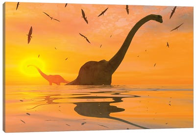 Diplodocus Dinosaurs Bathe In A Large Body Of Water Canvas Art Print