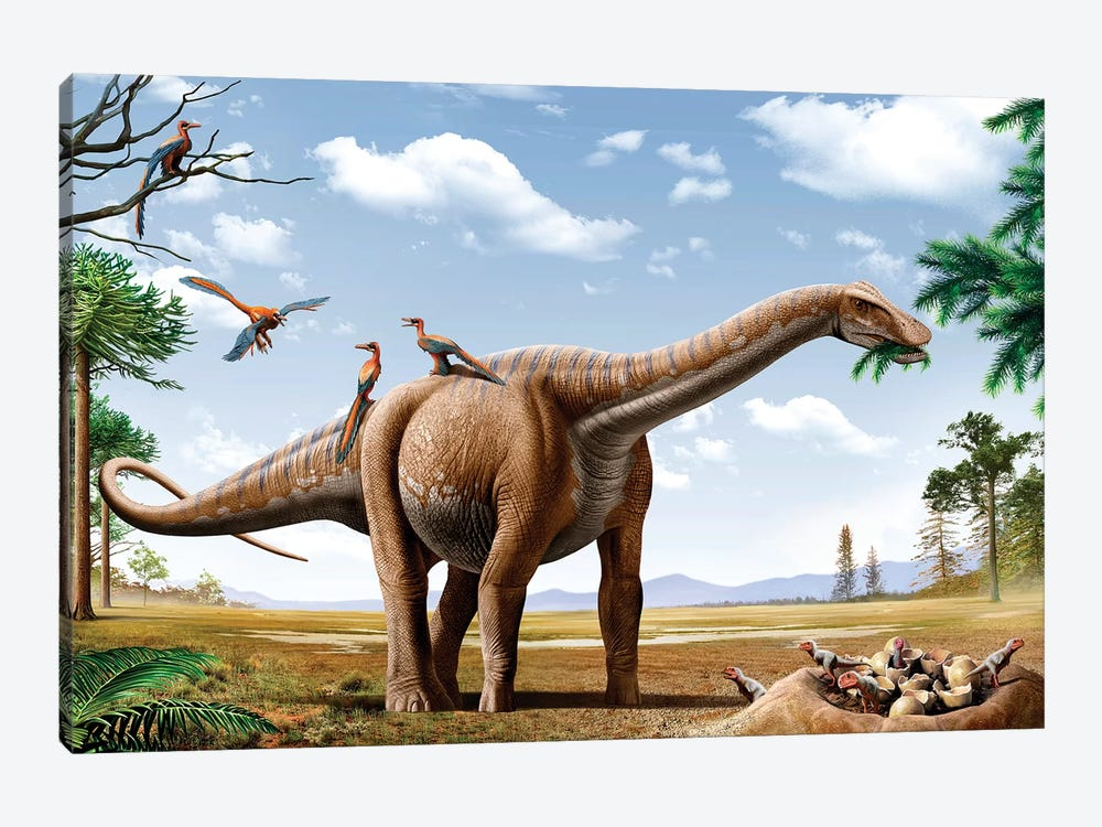 A Rapetosaurus Feeding On Leaves With Rahonavis On Its Back by Mohamad Haghani 1-piece Canvas Wall Art