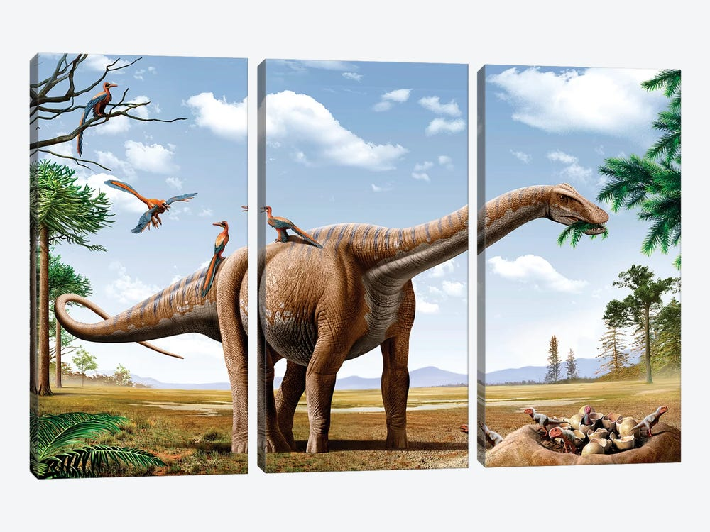 A Rapetosaurus Feeding On Leaves With Rahonavis On Its Back by Mohamad Haghani 3-piece Canvas Artwork