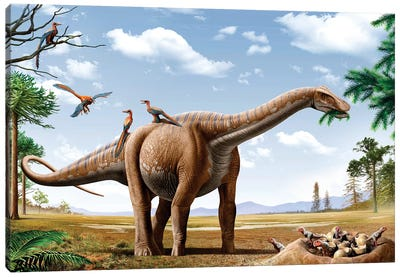 A Rapetosaurus Feeding On Leaves With Rahonavis On Its Back Canvas Art Print
