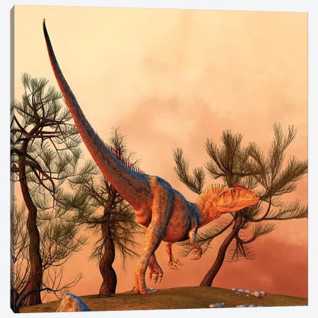 Allosaurus, A Large Theropod Dinosaur From The Late Jurassic Period Canvas Print #TRK2722} by Philip Brownlow Canvas Art Print