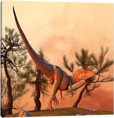 Allosaurus, A Large Theropod Dinosaur From The Late Jurassic Period Canvas Art Print