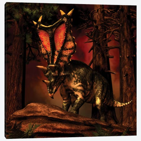 Chasmosaurus Was A Ceratopsid Dinosaur From The Upper Cretaceous Period Canvas Print #TRK2723} by Philip Brownlow Canvas Art Print