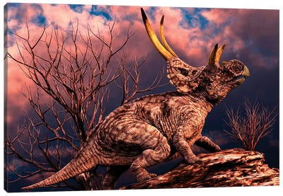Diabloceratops Was A Ceratopsian Dinosaur From The Cretaceous Period Canvas Art Print