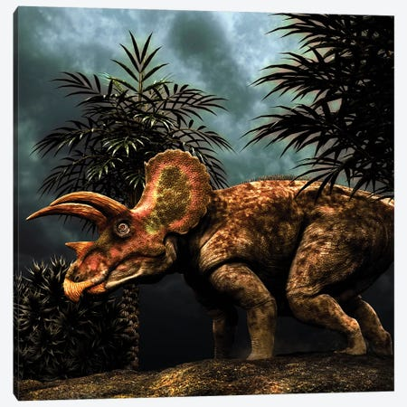 Triceratops Was A Herbivorous Dinosaur From The Cretaceous Period Canvas Print #TRK2727} by Philip Brownlow Canvas Artwork