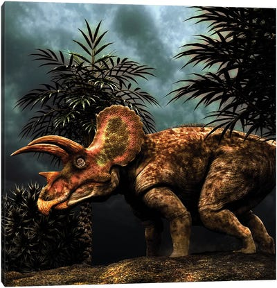 Triceratops Was A Herbivorous Dinosaur From The Cretaceous Period Canvas Art Print