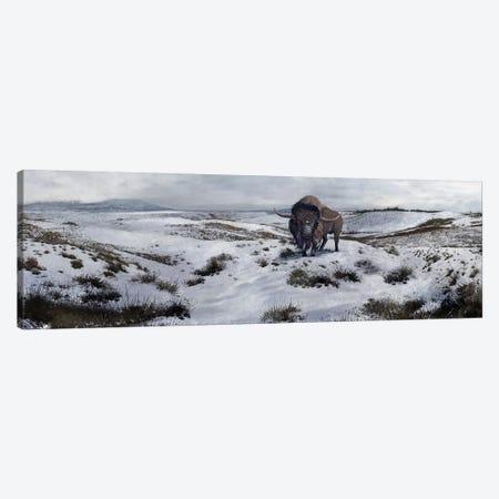 A Bison Latifrons In A Winter Landscape During The Pleistocene Epoch Canvas Print #TRK2729} by Roman Garcia Mora Canvas Art Print