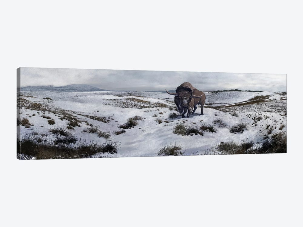 A Bison Latifrons In A Winter Landscape During The Pleistocene Epoch by Roman Garcia Mora 1-piece Canvas Print
