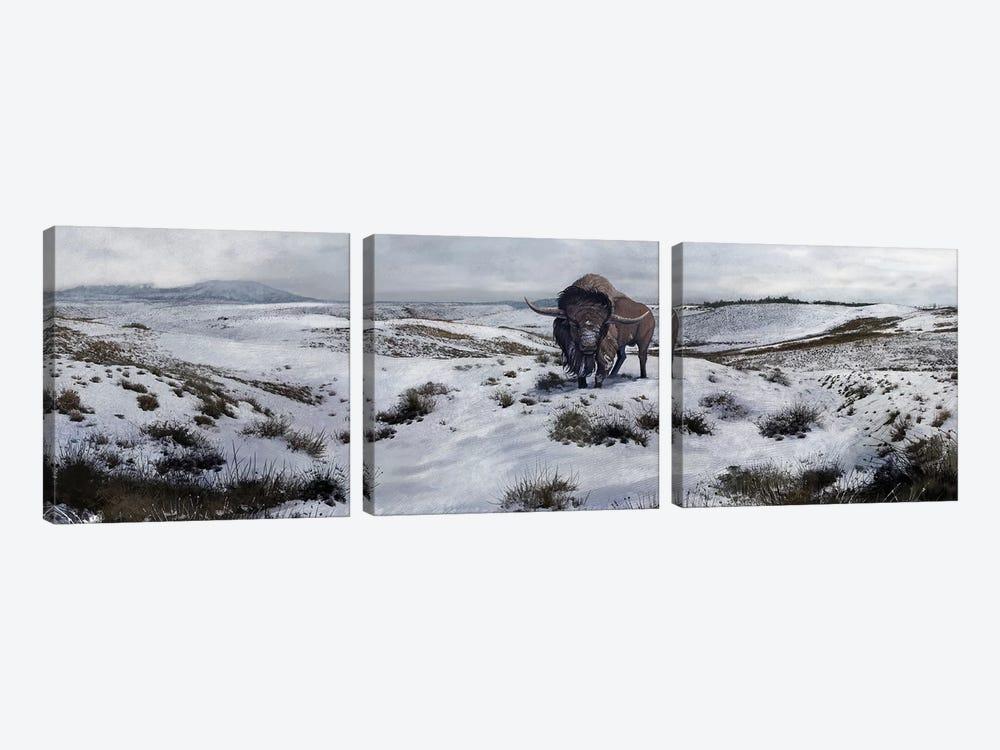 A Bison Latifrons In A Winter Landscape During The Pleistocene Epoch by Roman Garcia Mora 3-piece Art Print