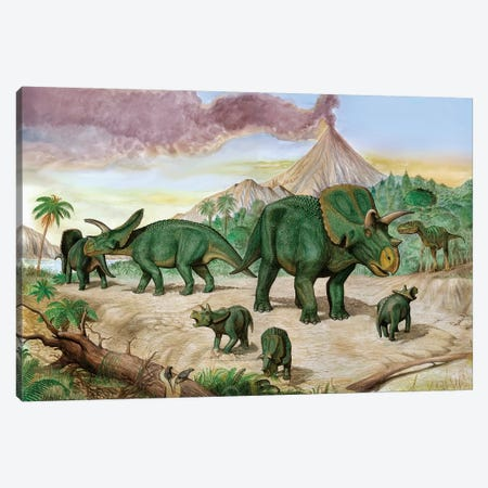 An Albertosaurus Observes A Family Of Arrhinoceratops Canvas Print #TRK2730} by Sergey Krasovskiy Canvas Artwork