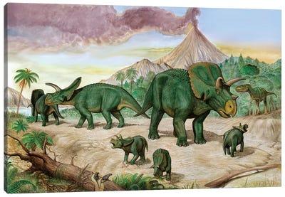 An Albertosaurus Observes A Family Of Arrhinoceratops Canvas Art Print