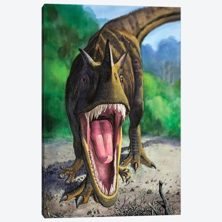 An Angry Ceratosaurus Dentisulcatus Dinosaur Shows Its Fierce Teeth Canvas Print #TRK2731} by Sergey Krasovskiy Canvas Art