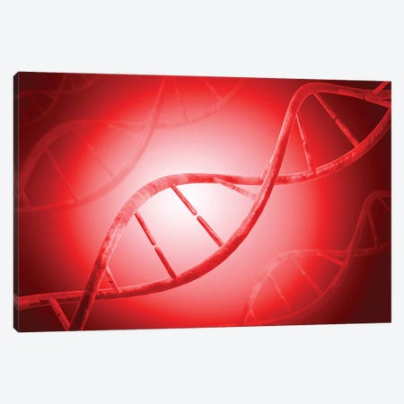 Conceptual Image Of DNA IV Canvas Print #TRK2742} by Stocktrek Images Canvas Print