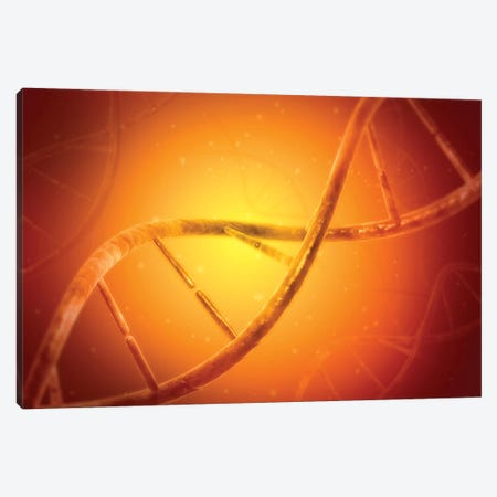 Conceptual Image Of DNA V Canvas Print #TRK2743} by Stocktrek Images Art Print