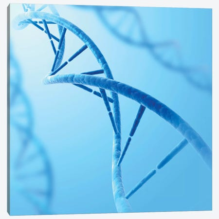 Conceptual Image Of DNA VIII Canvas Print #TRK2746} by Stocktrek Images Canvas Artwork