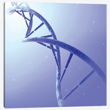 Conceptual Image Of DNA IX Canvas Print #TRK2747} by Stocktrek Images Canvas Art