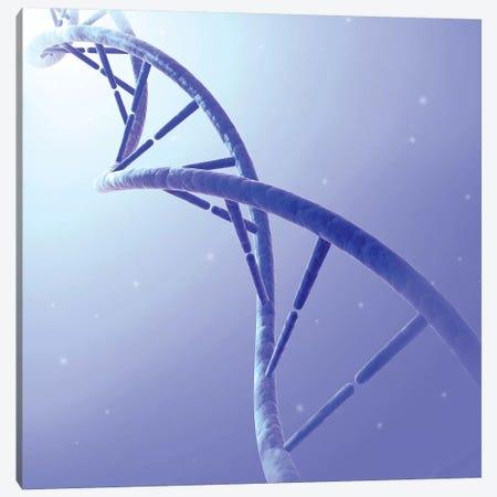 Conceptual Image Of DNA IX Canvas Print #TRK2747} by Stocktrek Images Canvas Art