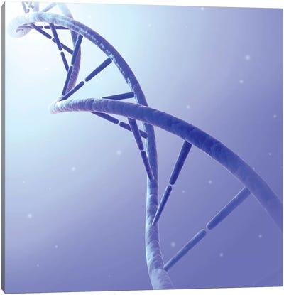 Conceptual Image Of DNA IX Canvas Art Print