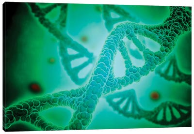 Microscopic View Of DNA II Canvas Art Print