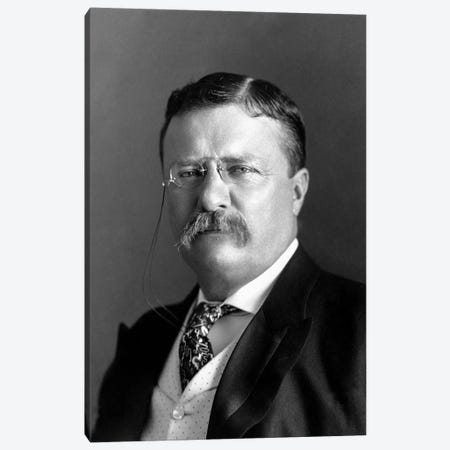 Portrait Of President Theodore Roosevelt In 1904 Canvas Print #TRK2808} by John Parrot Canvas Wall Art