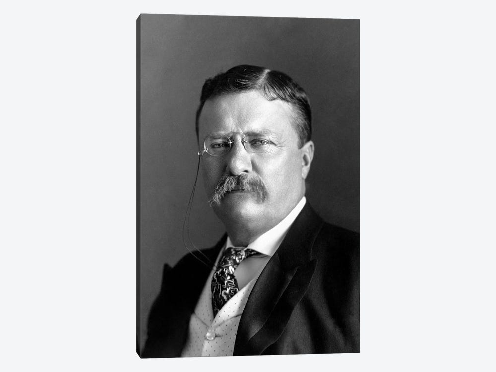 Portrait Of President Theodore Roosevelt In 1904 by John Parrot 1-piece Canvas Wall Art