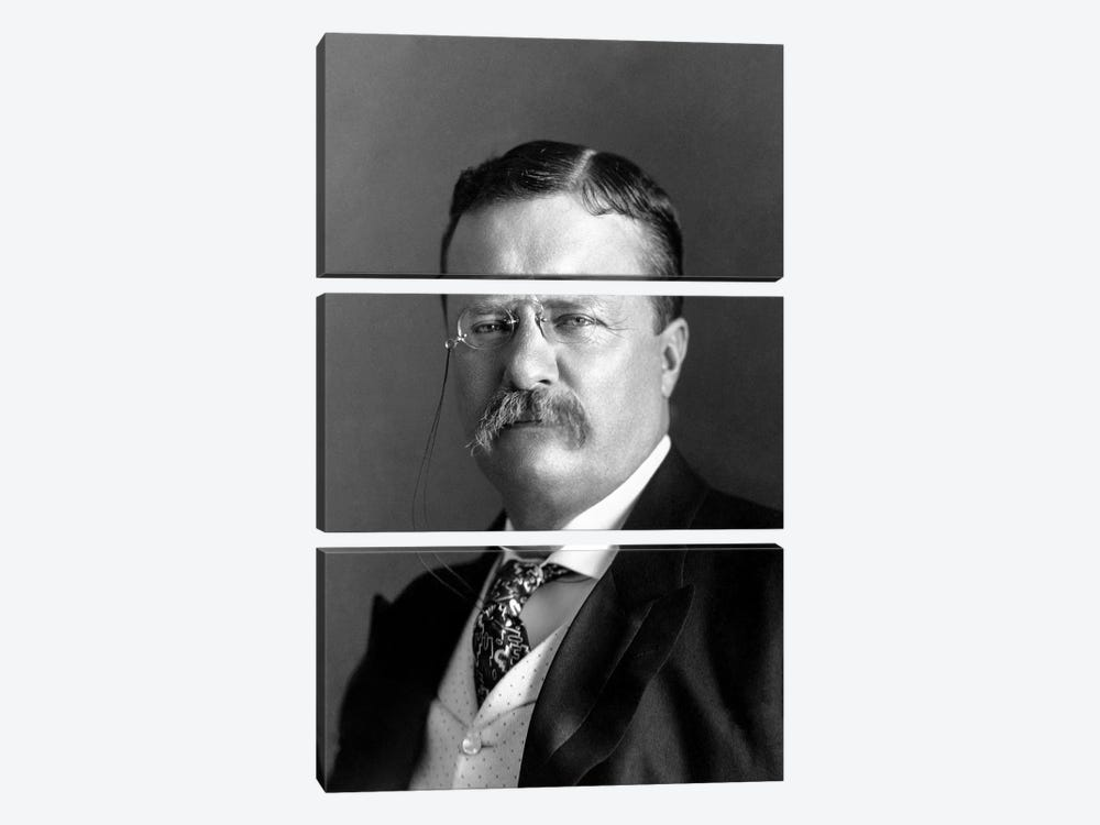 Portrait Of President Theodore Roosevelt In 1904 by John Parrot 3-piece Canvas Artwork