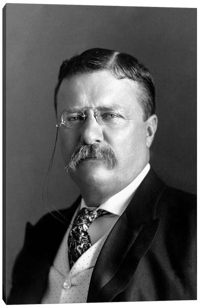 Portrait Of President Theodore Roosevelt In 1904 Canvas Art Print