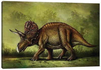 Triceratops horridus dinosaur. Canvas Art Print