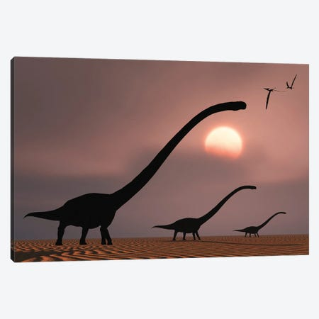 A herd of Omeisaurus dinosaurs silhouetted against a Jurassic sky. Canvas Print #TRK2845} by Mark Stevenson Canvas Art Print