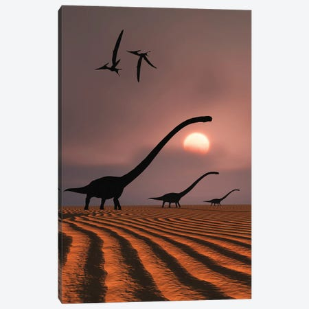 A herd of Omeisaurus dinosaurs silhouetted against a Jurassic sky. Canvas Print #TRK2846} by Mark Stevenson Art Print