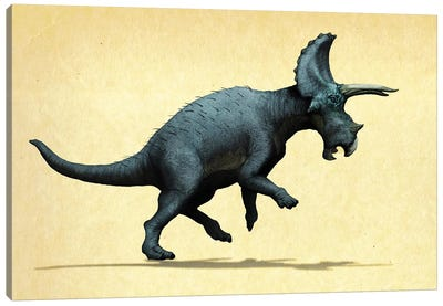 Lateral view of a Triceratops. Canvas Art Print