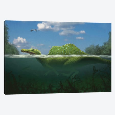 Spinosaurus swimming in a river. Canvas Print #TRK2859} by Paulo Leite da Silva Canvas Art Print