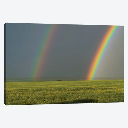 A Bright Double Rainbow Over A Ripening Canola Field In Alberta, Canada. Canvas Print #TRK2874} by Alan Dyer Canvas Wall Art