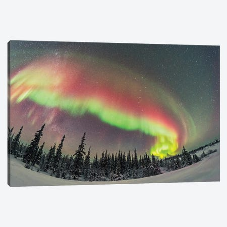 A Colorful Auroral Arc Developing Over The Boreal Forest In Manitoba, Canada. Canvas Print #TRK2882} by Alan Dyer Canvas Wall Art