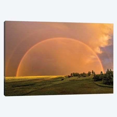 A Double Rainbow Over A Ripening Canola Field In Southern Alberta, Canada. Canvas Print #TRK2888} by Alan Dyer Canvas Artwork