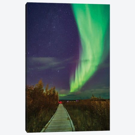 An Auroral Arc Over The Boardwalk At Rotary Park In Yellowknife, Canada. Canvas Print #TRK2915} by Alan Dyer Canvas Art Print