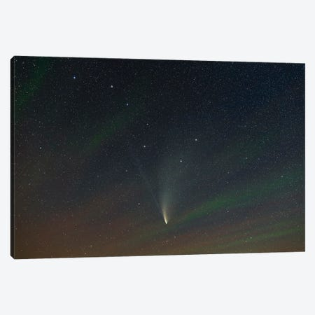Comet Neowise In Ursa Major With Airglow. Canvas Print #TRK2972} by Alan Dyer Canvas Art