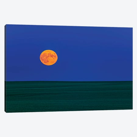 Full Moonrise Over A Green Field Of Wheat In Alberta, Canada. Canvas Print #TRK3009} by Alan Dyer Canvas Print