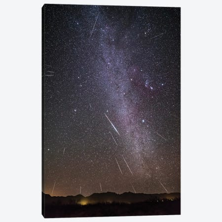 Geminid Meteor Shower In A View Framing The Winter Milky Way. Canvas Print #TRK3011} by Alan Dyer Canvas Artwork