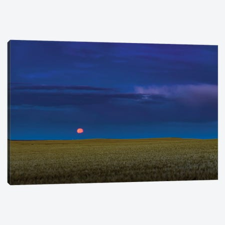 Harvest Moon Rising In Southern Alberta, Canada. Canvas Print #TRK3013} by Alan Dyer Canvas Art