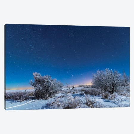 Orion And Taurus Rising In The Moonlight Over A Snowy Landscape In Alberta, Canada. Canvas Print #TRK3066} by Alan Dyer Canvas Art