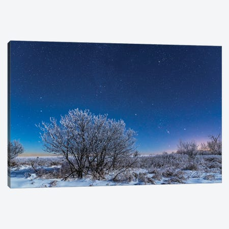 Orion And The Stars Of A Northern Winter Rising Over A Snowy Landscape In Canada. Canvas Print #TRK3071} by Alan Dyer Canvas Art