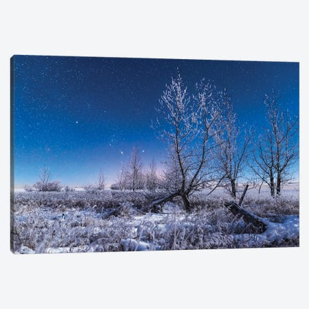 Orion Rising In The Moonlight Over A Snowy Landscape In Southern Alberta, Canada. Canvas Print #TRK3078} by Alan Dyer Canvas Art