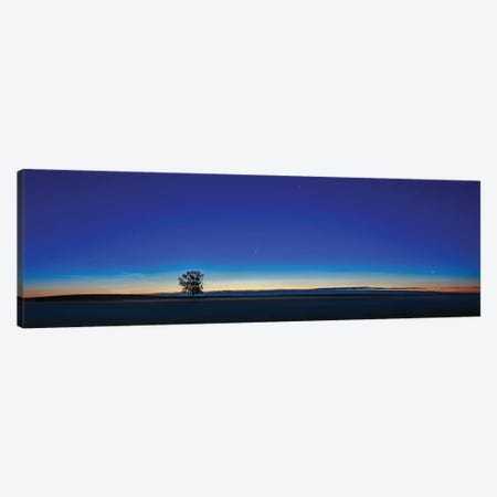 Panorama Of A Lone Tree With Comet Neowise At Dawn In Alberta, Canada. Canvas Print #TRK3083} by Alan Dyer Canvas Art Print