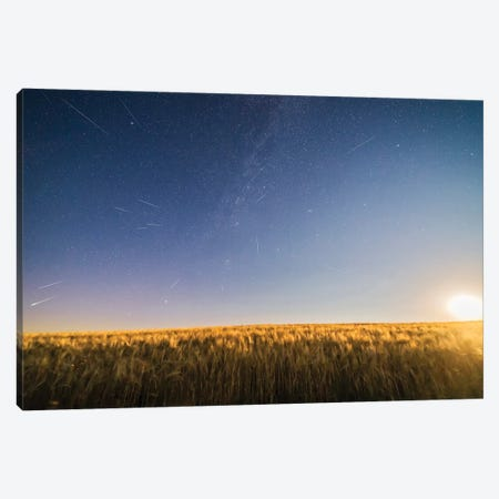Perseid Meteor Shower Over A Moonlight Wheat Field In Canada. Canvas Print #TRK3107} by Alan Dyer Canvas Print