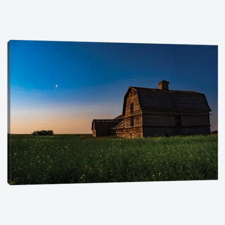 Planet Mars Shining Over An Old Barn Amid A Field Of Canola. Canvas Print #TRK3110} by Alan Dyer Art Print